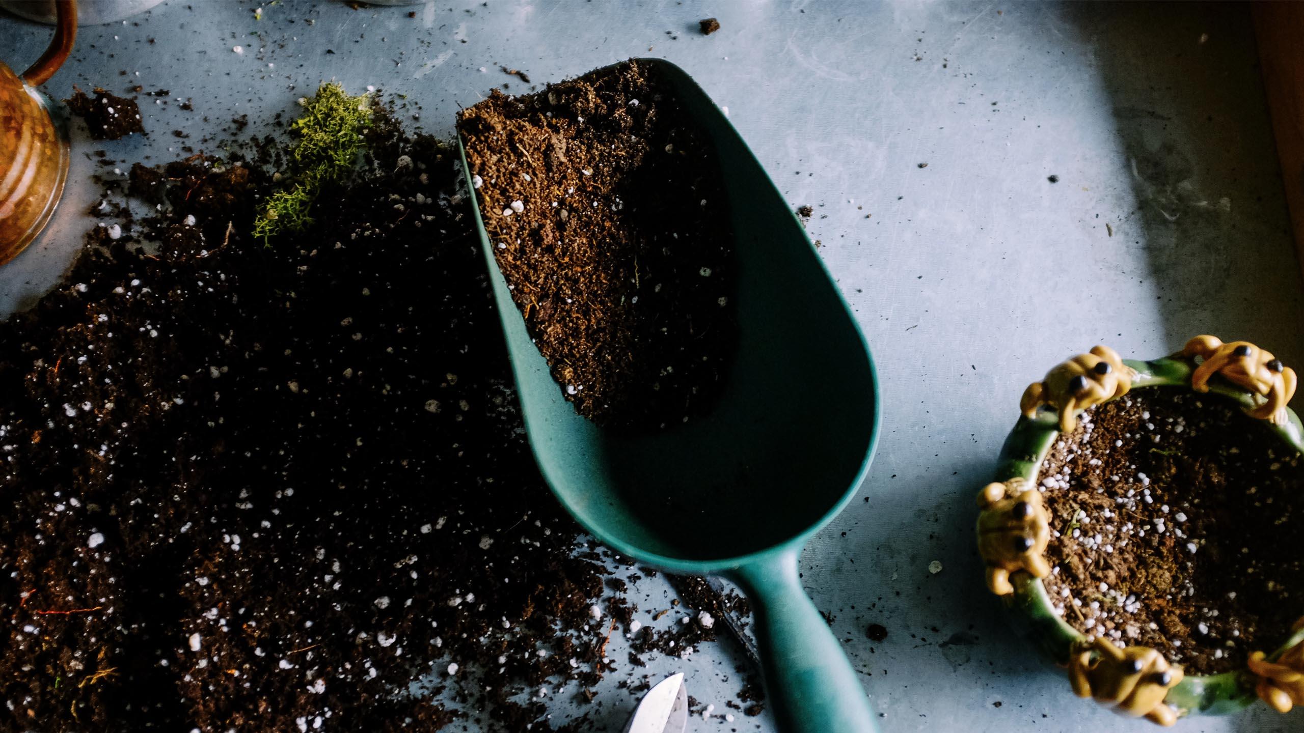 TB Gardening Services